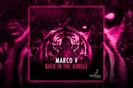 FLAM133_Marco V - Back In The Jungle  Websiteslider-1280x720