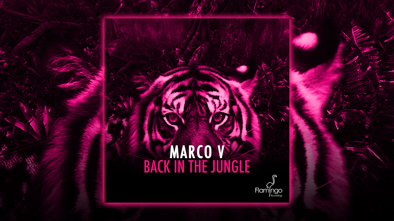 Back In The Jungle by Marco V is out on iTunes and Spotify