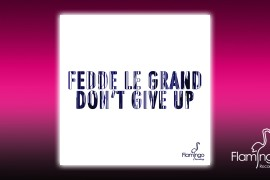FLAM111_Fedde le Grand - Don't Give Up Website banner 02