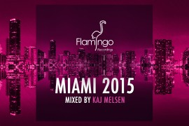 Flamingo miami 2015