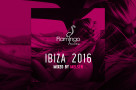 Flamingo-Ibiza-2016_Websitepost